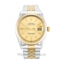 Rolex Datejust Champagne Dial 16013 36MM