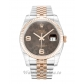 Rolex Datejust Chocolate Floral Diamond Dial 116231 36MM